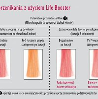 Life Booster Fox Terapia Ozonowa Sauny do włosów Fox 5904993463000
